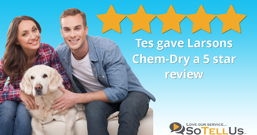 Tes S gave Larsons Chem-Dry a 5 star review