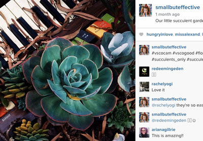 The Complete Guide to Instagram for Professional Photographers