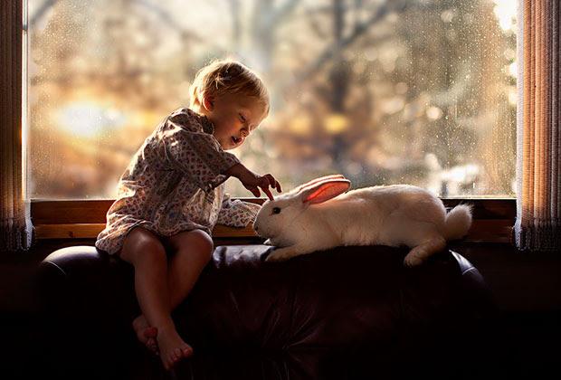 ภาพถ่ายเด็กเล่นกับกระต่ายที่หน้าต่าง