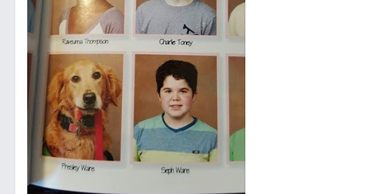 Boy's service dog poses for sweet photo in school yearbook