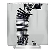 Uprice 1224 Shower Curtain by Mr Caution