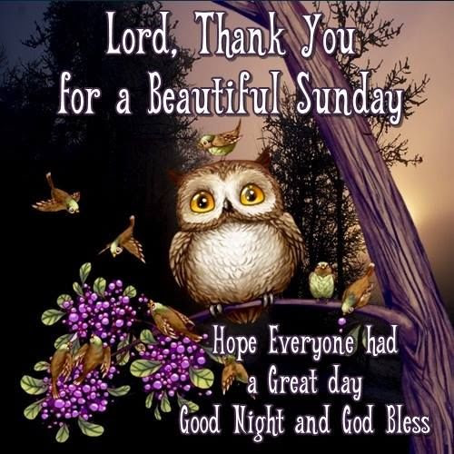Lord Thank You For A Beautiful Sunday Goodnight Pictures Photos