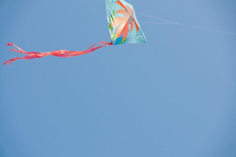 yw-go fly kite-marina barrage-090824-0003.jpg
