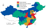 Thumbnail of Distribution of Neisseria meningitidis sequence type 4821 clonal complex (CC4821) serogroup B strains in China, 1978–2013. Invasive strains were detected in 5 provinces (red), carriage strains were detected in 9 provinces (blue), and invasive and carriage strains were detected in 5 provinces (gold). Regions where CC4821 strains were not found or where surveillance is not conducted are also shown.