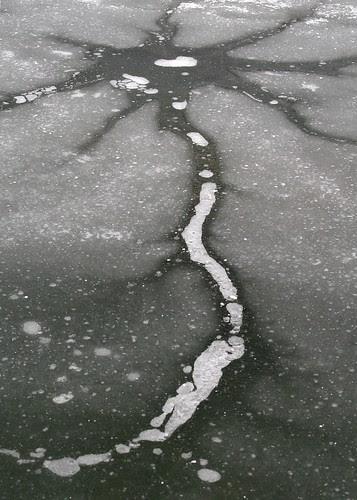 ice-sunflower-crater