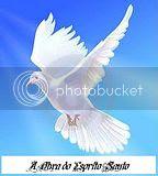 dons espirituais,A Obra do Espirito Santo,Batismo com o Espirito Santo,Batismo no Espirito Santo,Linguas estranhas,visao,revelacao