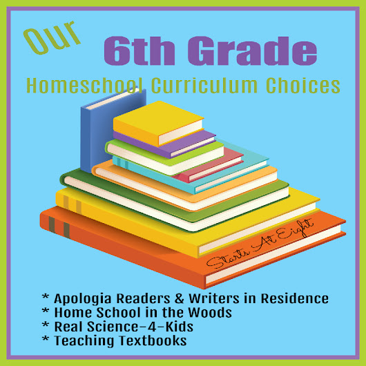 Our 6th Grade Homeschool Curriculum Choices
