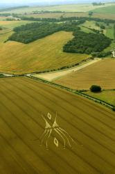 crop-westwoodoh-uk-26-7-12a.jpg