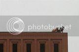 Begituan di atap kampus ! Kiamat sudah deket...banget!