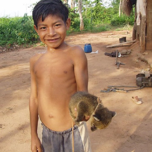 Mbya Guarani boy with pet coati mundi.
