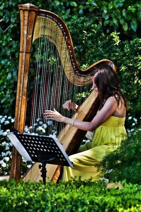 A harpist for the wedding ceremony music.     Wedding