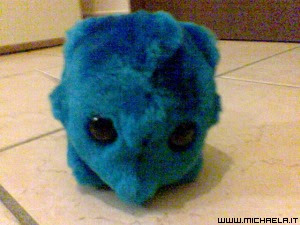 Virus del raffreddore