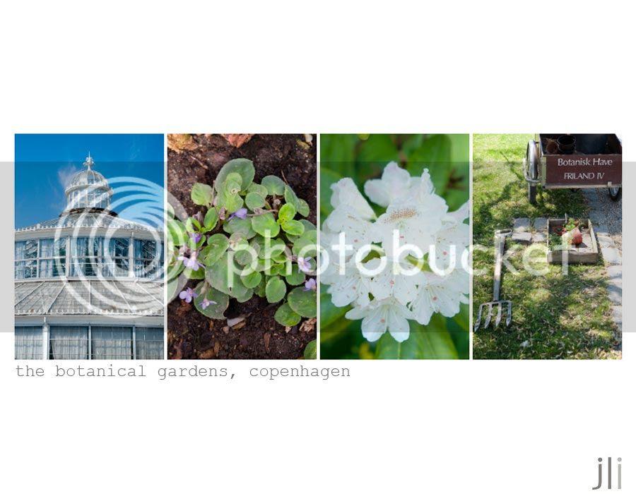 the botanical gardens, copenhagen photo garden-2_zpsac3f0289.jpg