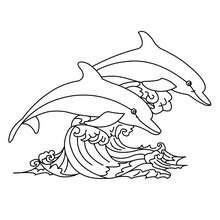 malvorlagen wale und delphine - x13 ein bild zeichnen
