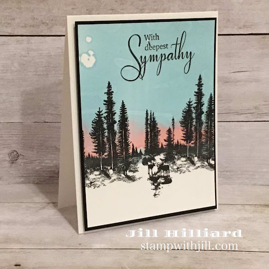 Stay Wild Sympathy Card - Jill's Card Creations