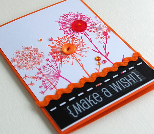 make a wish (2)