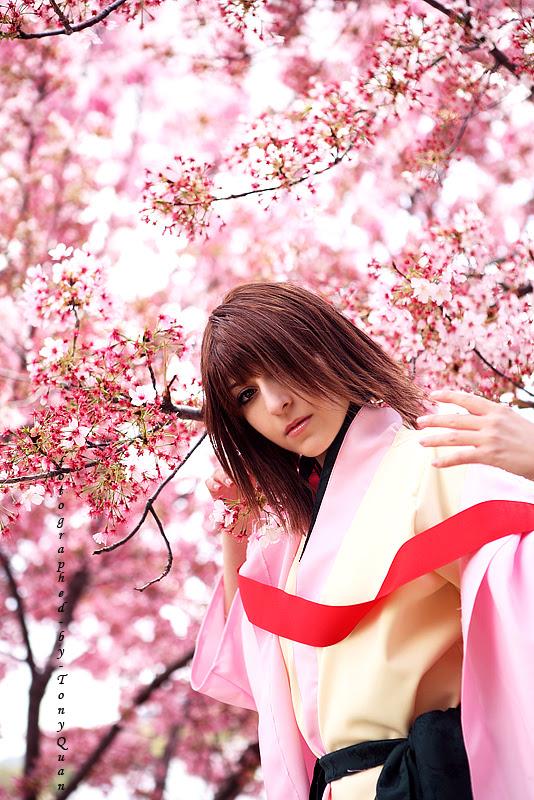 cherry tree blossom. cherry tree blossom drawing.