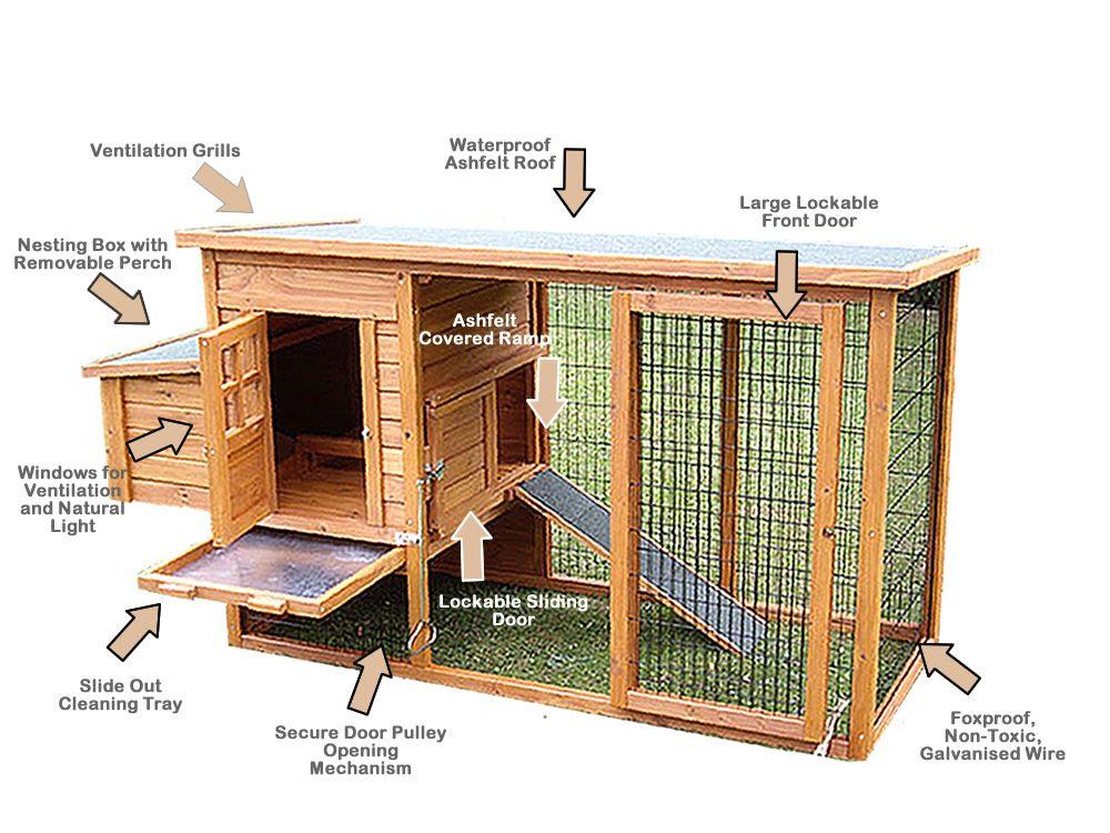 Mina: Online chicken coop plans