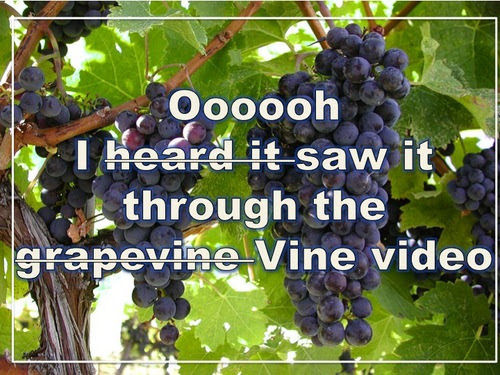 Vine as a Marketing Tool? Brands and Nonprofits That 'Vine' Right