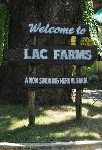 2011-10-27 LAC Farms Tour LR (17)