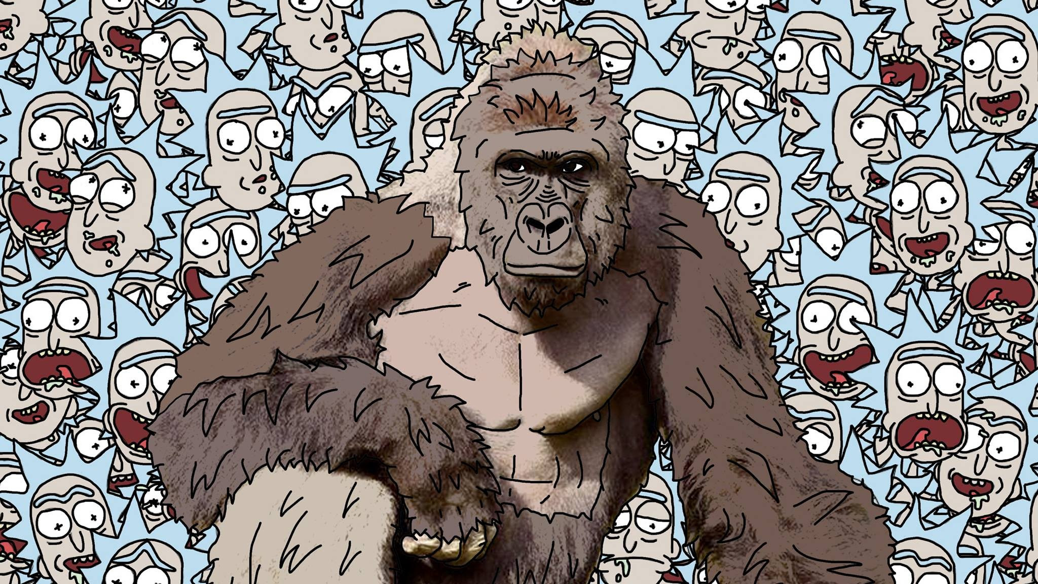 Download Wallpapers Download 2560x1440 2048x1152 Px Harambe Rick