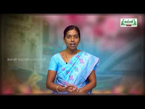 10th Social Science இரண்டாம் உலகப்போரு பகுதி 1 Kalvi TV
