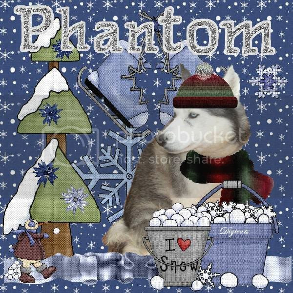 Dog,Winter,Snowcats Project,Happy Holidays,Holiday Glitter