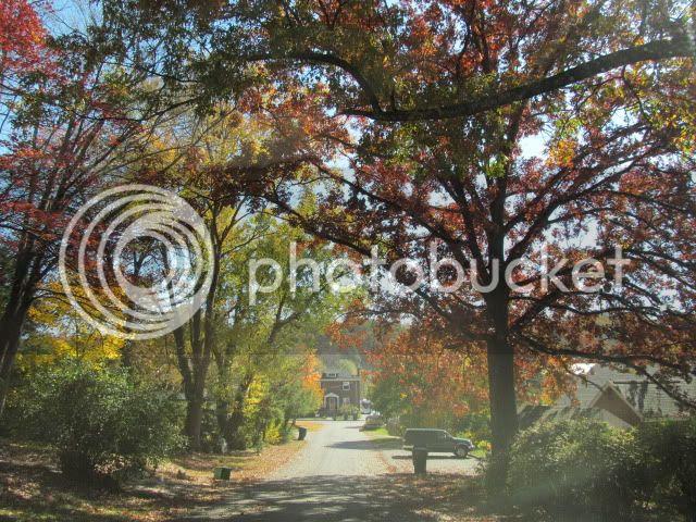photo 2012-10-25011149_zps166116ec.jpg