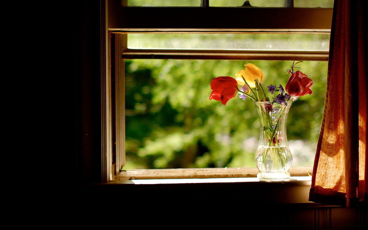 http://24.media.tumblr.com/tumblr_mbdrgc1MDc1rdvzeho1_1280.jpg