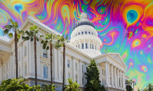 California Rolled Out 278 Pages of Marijuana Rules. Here Are Highlights. | The Recorder