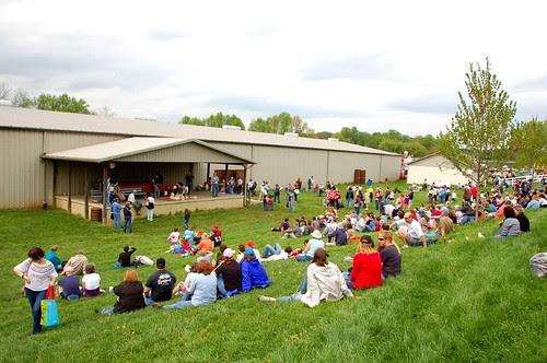 Sheep Shearing draws a crowd