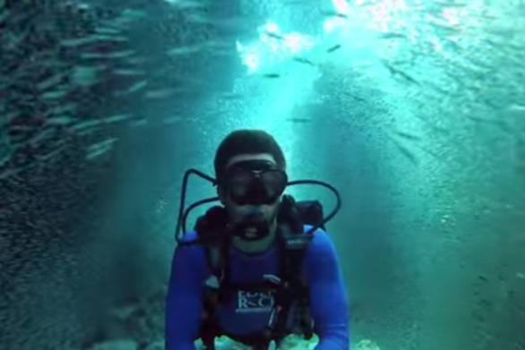 Δύτης κολυμπάει ανάμεσα σε ένα εκατομμύριο ψάρια! (video)