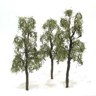 Hornby Birch