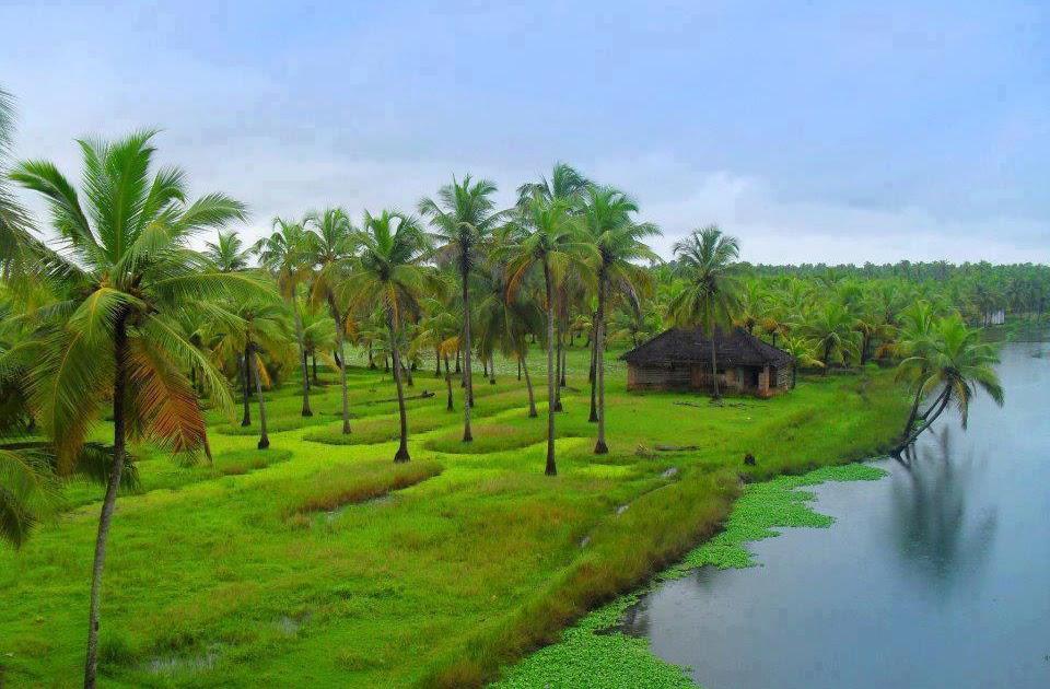 Photos Of Nature: Beautiful Nature Photos Of Kerala
