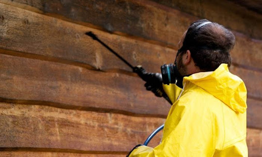 O'Connor Pest Control Simi Valley offer one-time or recurring, bi-monthly check-ins for your pest control, inspections and treatment needs in Simi Valley. We will work within your budget to make sure your pest issues are resolved. We will put an iron curt by O'Connor Pest Control Simi Valley | We Heart It