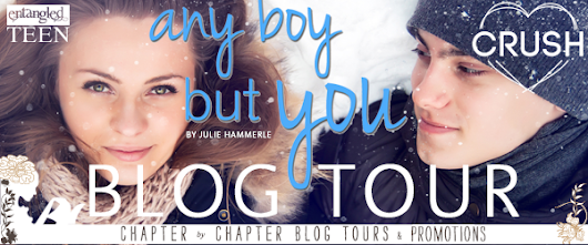 Any Boy But You (North Pole, Minnesota #1) by Julie Hammerle (Review & Giveaway)