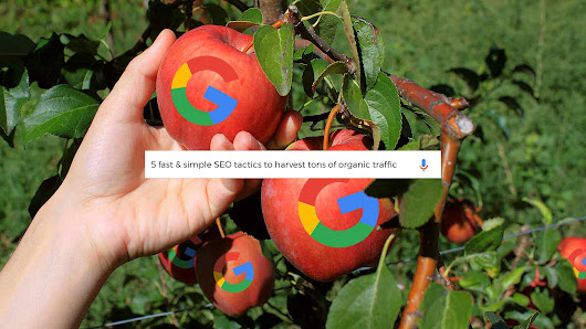 Low-hanging fruit: 5 fast & simple SEO tactics to harvest tons of organic traffic