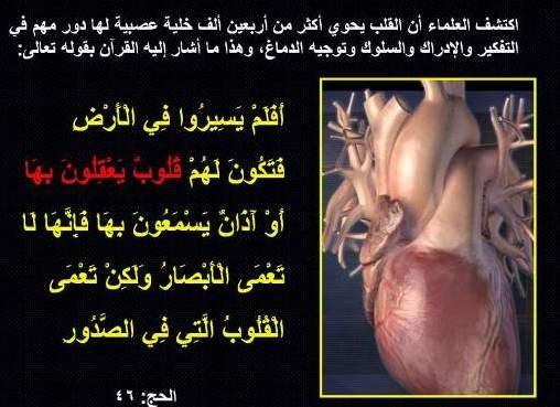 القلب، في القرآن، مركز التفكير والتعقل