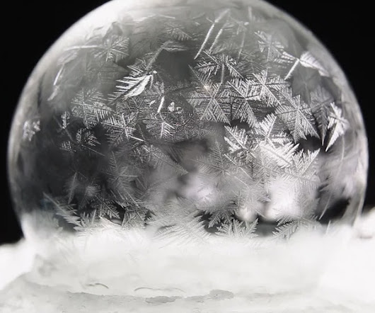 """Frozen Soap Bubbles"" by Paul Zaluska"