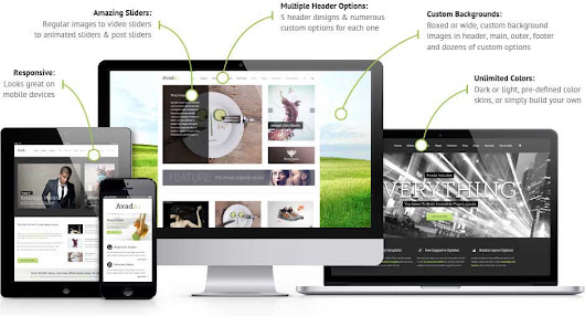 Website Design Columbia SC DBL07 Custom Web Designer