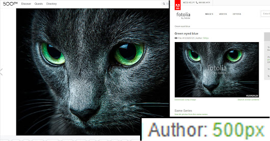 Beware: 500px Now Sells Your Photos on Fotolia Without Credit