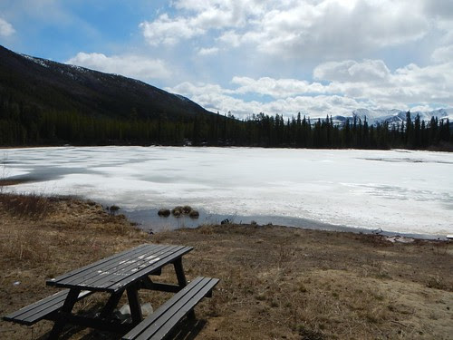 Everyday for 7 Weeks - Day 12 - Watson Lake to Whitehorse