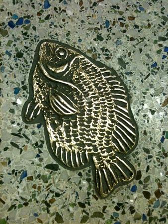 golden fishie