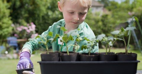 DIY Food: Why Every Kid Should Learn to Garden