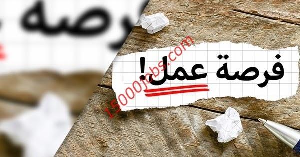 وظائف شاغرة بجهة شبه حكومية بدبي لمختلف التخصصات