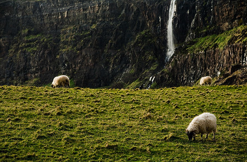 Scotland - Isle of Skye: The Greenest Pasture