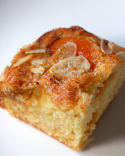 Apricot and Almond Cake© by Haalo