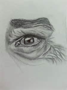 drawing   man eye