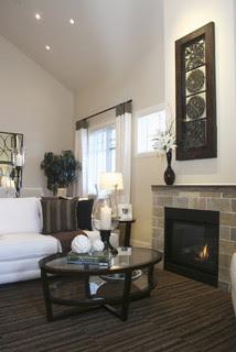 Fireplace contemporary living room