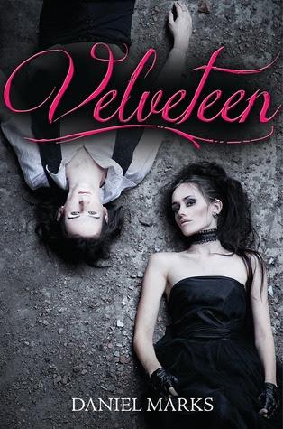 Velveteen (Velveteen, #1)